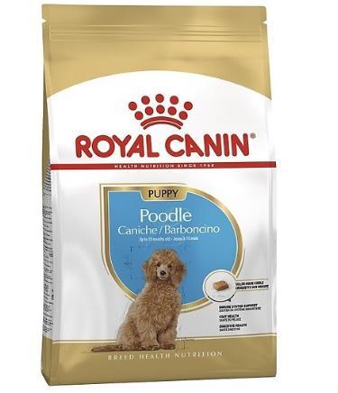 Thức Ăn Cho Chó con Poodle Royal Canin Poodle Puppy