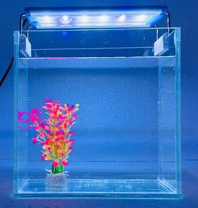 Bể cá nhỏ để bàn có đèn led