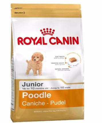 Thức ăn chó con Poodle 2 tháng, 3 tháng, dưới 10 tháng