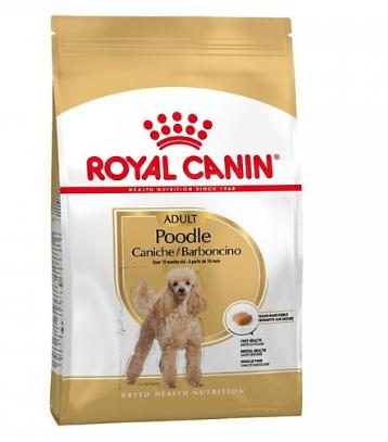 Thức Ăn Cho Chó Poodle trưởng thành