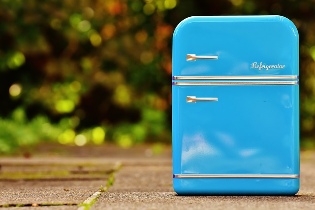 Tủ lạnh mini(Ảnh minh họa)
